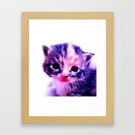 Blue Pink Cute Little Cat Framed Art Print