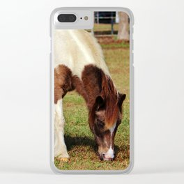 American Paint Horse Clear iPhone Case