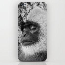 "Close-up ""black-faced"" Hanuman langurs iPhone Skin"