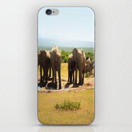 Elephants at the waterhole iPhone Skin