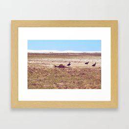 Vultures on Donkey Framed Art Print