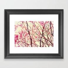 blossom wonderland Framed Art Print