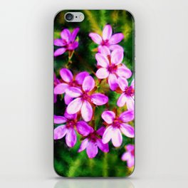 Spring Sweetness iPhone Skin