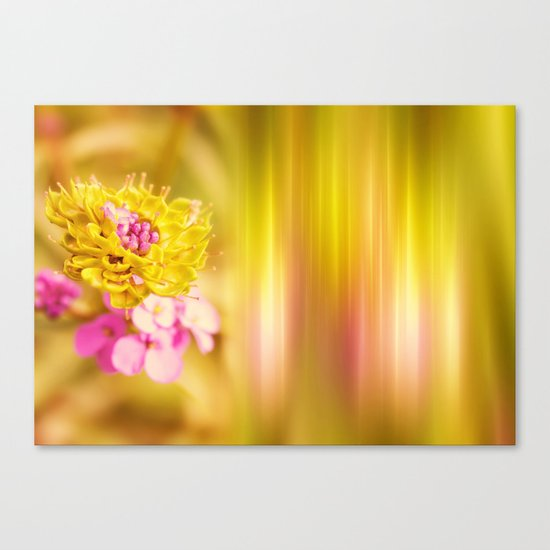 The Sound of Light and Color Canvas Print