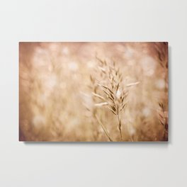 Sepia toned ripe grass inflorescence Metal Print