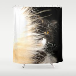Fluffy Calico Cat Shower Curtain