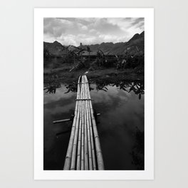 Bamboo Bridge Art Print
