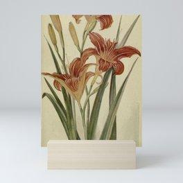 Vintage Botanical Print - Day Lily Mini Art Print