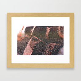 Cascata. Framed Art Print