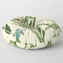 Myosotis palustris, cynoglossuin officinale poster Floor Pillow