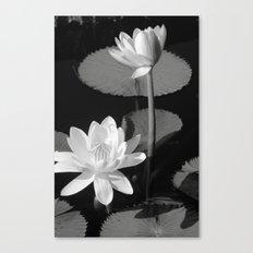 Black & White Lilypad Canvas Print