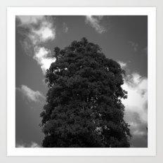 BLCKBTY Photography 011 Art Print