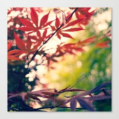 Cloudy With  A Chance of Maple Canvas Print