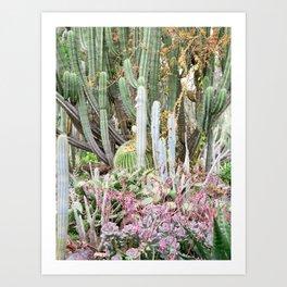Cactus Garden #1 Art Print