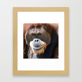 Big Daddy Framed Art Print