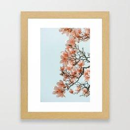 Pink Spring #4 Framed Art Print