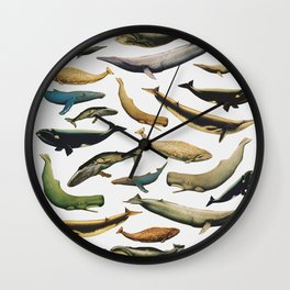 Color Whales Wall Clock