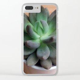 SuccuLOVE Clear iPhone Case