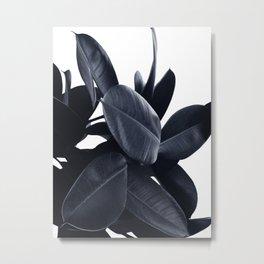Indigo Rubber Plant Metal Print