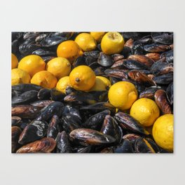 Mussels Canvas Print