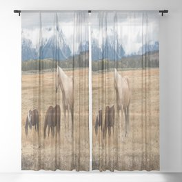 Mountain Horse - Western Style in the Grand Tetons Sheer Curtain