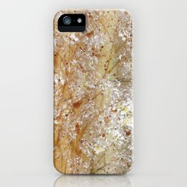 Bristles And Blooms iPhone Case