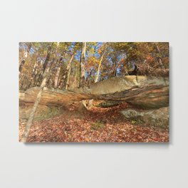 Photos USA Leaf Grundy County Tennessee Autumn Nature Forests Trees Foliage forest Metal Print