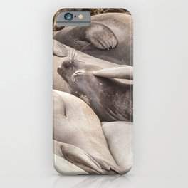 A Little Itchy iPhone Case
