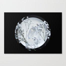 Silver Kiss II  Canvas Print