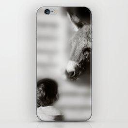 The Meeting iPhone Skin