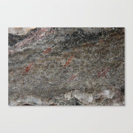 Abstract Serpentine Canvas Print
