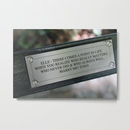 Central Park Inscription Metal Print