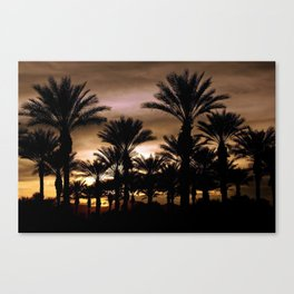suprise sunset Canvas Print