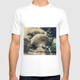 Fuente T-shirt