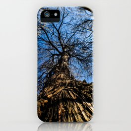 An Old Tree Through a Fish Eye Lens iPhone Case