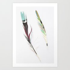 Painted nature-feathers Art Print