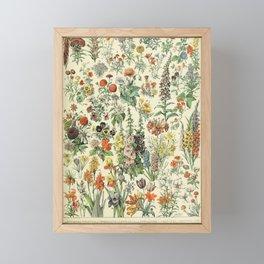 Adolphe Millot Vintage Fleurs Flower 1909 Framed Mini Art Print