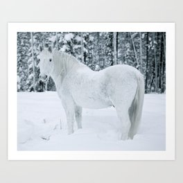 Wild n White Art Print