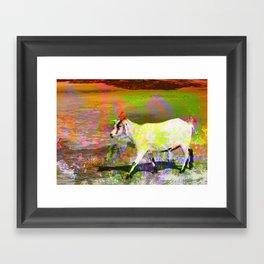 goat flower Framed Art Print