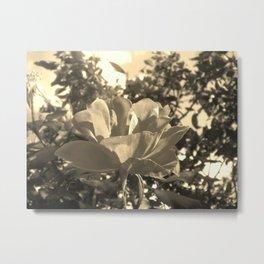 Floral Symphony Metal Print
