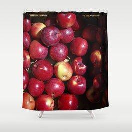 Apple Harvest! Shower Curtain