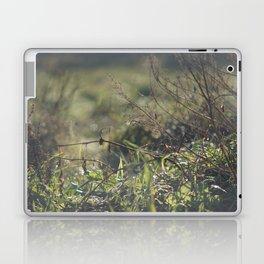 Light on Grass Laptop & iPad Skin