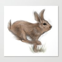 hare Canvas Prints featuring Hare by Mr Patch