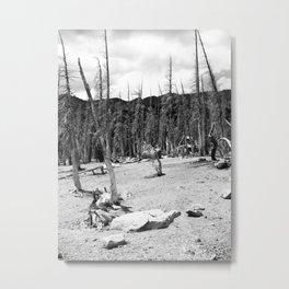 ASHEN Metal Print
