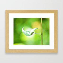 Jungle Flower Framed Art Print