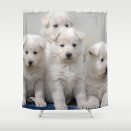 4 white Swiss shepherd dogs Shower Curtain