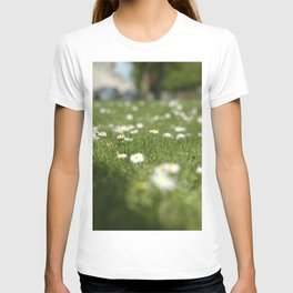 Daisies of Brussels T-shirt