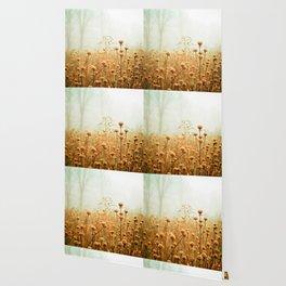 Daybreak in the Meadow Wallpaper