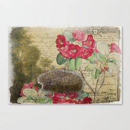 The Hedgehog Canvas Print