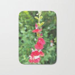 Balsam flower blooming in the garden of a guest house in Boseong, Jeollanam-do. korea Bath Mat
